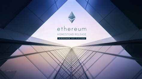 amazon ethereum petition 183 amazon com please start accepting the ethereum