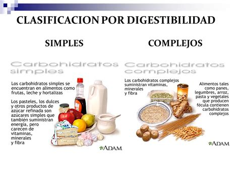 alimentos hidratos de carbono lista tipos de carbohidratos