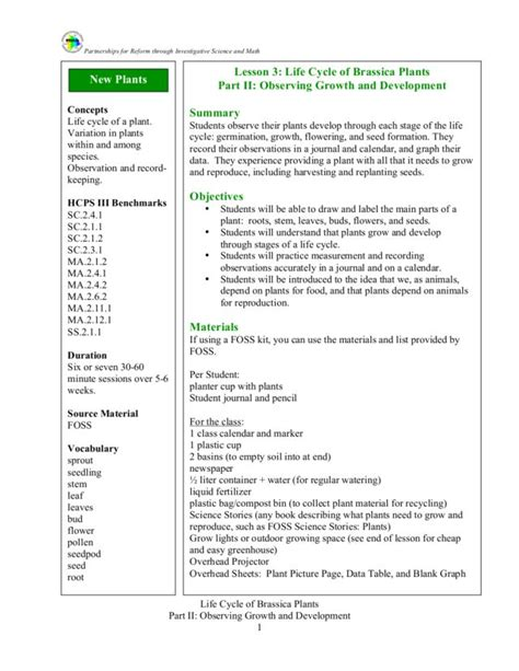 biography lesson plan for 2nd grade plant life cycle 5th grade science life cycle of a plant experience learn