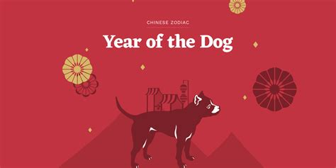 chinese new year 2018 all you want to know about the year