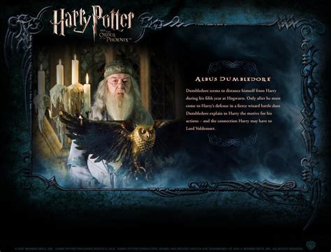 biography of harry potter hp bio harry potter movies photo 1759565 fanpop