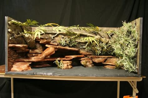 Bearded Tank Decor by Custom Designed Enclosures For Vivariums Within Uk
