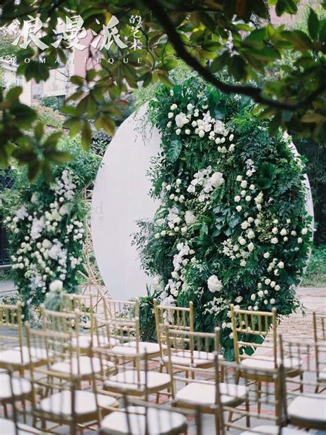 picture    white backdrop  lush greenery