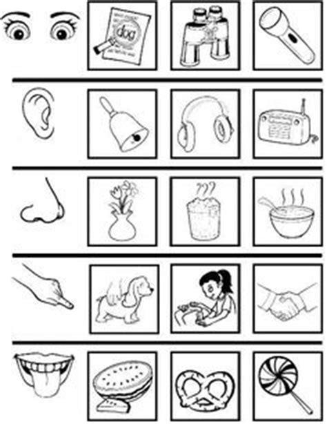 imagenes sensoriales castellano los cinco sentidos para colorear fichas pre kinder