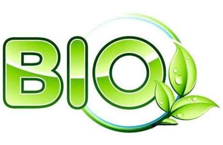 Bio Adalah bio design adalah biologi satu