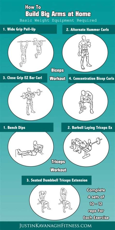 here are my top bicep and triceps exercises to help you