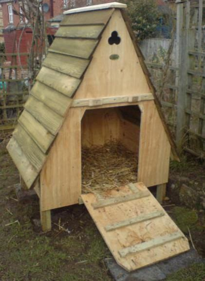 backyard ducks housing best 25 duck house ideas on pinterest duck coop
