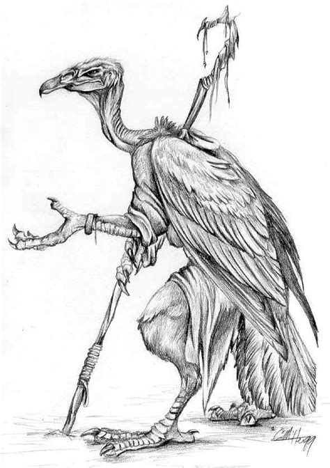 simple vulture tattoo drawn turkey vulture sketch pencil and in color drawn