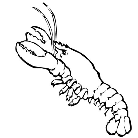 lobster coloring sheet printable coloring pages