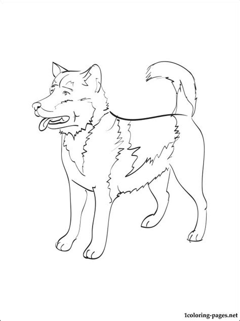 greenland dog coloring page coloring pages