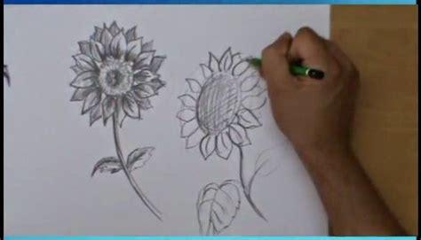 come disegnare dei fiori corso di grafica e disegno per imparare a disegnare