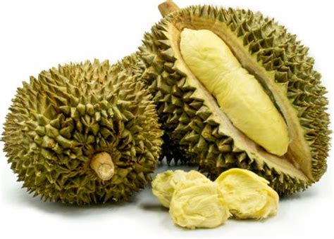memilih durian  manis  dagingnya