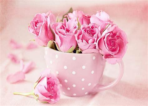 imagenes para celular flores imagenes de flores para fondo de pantalla fondos de