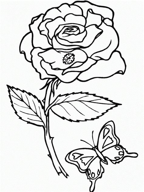 coloring pages of flowers and plants rainforest plants coloring pages coloring home