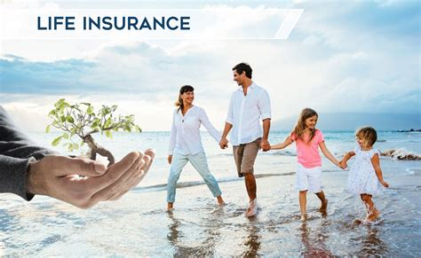 Florida Life Insurance Quotes   Diverse Insurance Group