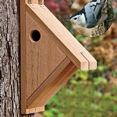 free home plans blue bird house and bird house plans on