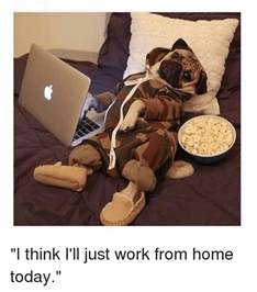 best work from home 25 best memes about work from home work from home memes