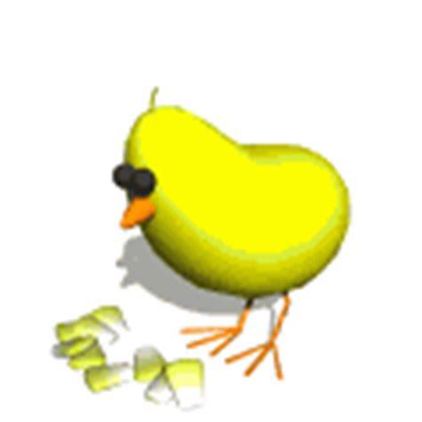 imagenes gif naturaleza gifs animados de pollitos animaciones de pollitos