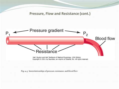 resistance in parallel blood flow resistance in parallel blood flow 28 images движение крови по сосудам энциклопедия km ru