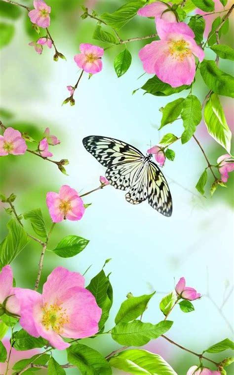 bau wallpapers wallpaper bunga bergerak  hp