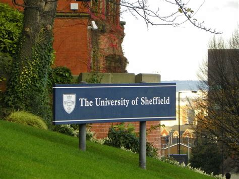 Sheffield Mba Scholarship by Chemical Engineering Scholarships At Sheffield