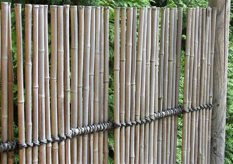 Garten Sichtschutz Bambus filigraner blickdichter sichtschutzzaun aus bambus
