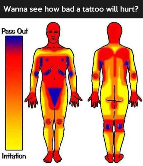 female tattoo placement chart tattoo pain chart helpful hints pinterest