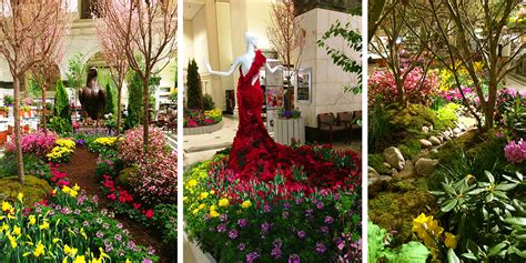 Nyc Backyard Macy S Flower Show Burke Brothers Landscape Design Build