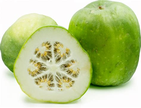 winter melon information recipes and facts