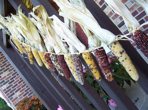 rustic and chic indian corn decorations b lovely events