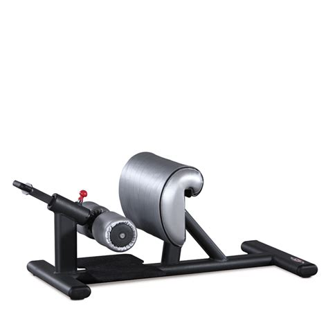 sissy squat bench for sale sissy squat