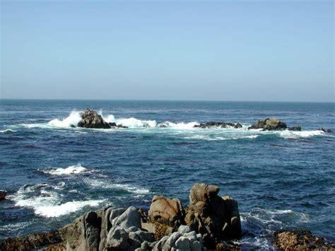 Monterey, Aquarium, Pacific Grove, Asilomar State Park
