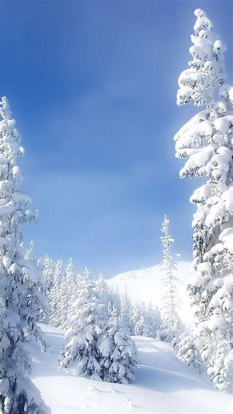17 Best Images About Winter - 17 best images about winter blues on blue