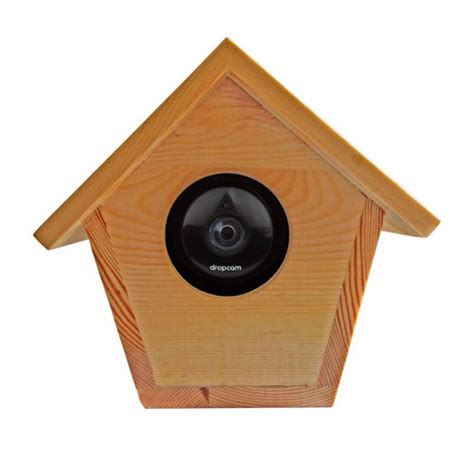 outside cameras for house bird house hidden outdoor case for nest cam connected crib