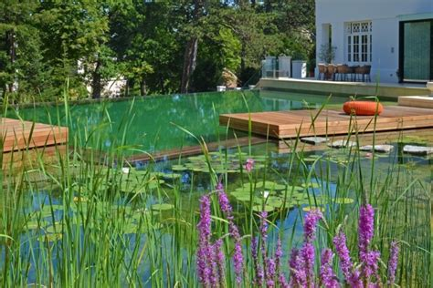 natural pool your own private paradise natural swimming pools by biotop