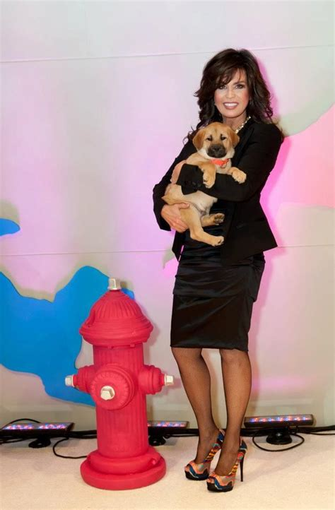 why are tamrons legs shiny on today show 231 best marie osmond images on pinterest