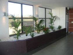 Living Decor Hire Plants Whangarei About Living Decor Living Decor Indoor Plant Hire Specialist