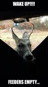 Deer Feeders Near Me 25 Best Ideas About Humor On Deer