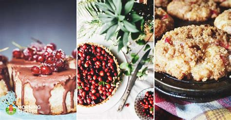 40 recipes to sweeten the season the best barks candies fudges gummies truffles and treats books 30 delicious cranberry recipes to sweeten your festive season