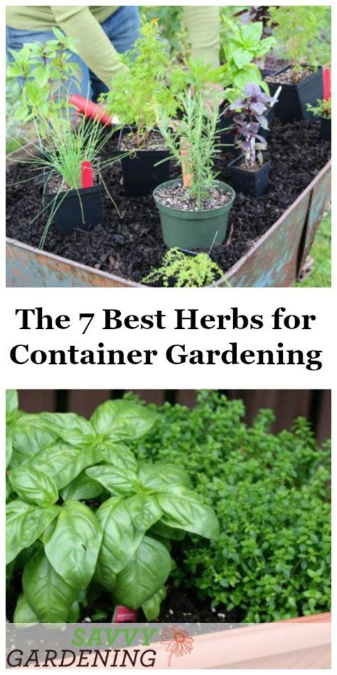 herb container garden home design ideas - Best Herbs For Container Gardening