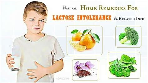 25 best ideas about lactose intolerance on