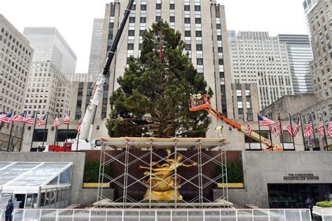 performers for the christmas tree rockefeller rockefeller center tree lighting 2015 when and where to live list of