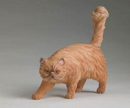 lettiere coperte per gatti lettiere gatti accessori gatto migliori lettiere per gatti