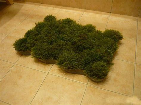 Grass Bath Mat grass bath mat 9 pics
