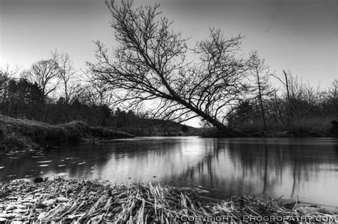 white waters and black ebook tree over the river black and white phogro
