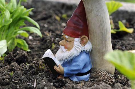 garden gnome woman s home in devon england besieged by gnomes huffpost