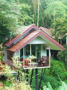 treehouse vacations 1000 images about rock and treehouse resort on pinterest