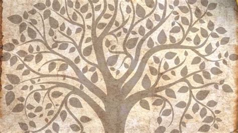 what does the tree symbolize tree of life symbol youtube
