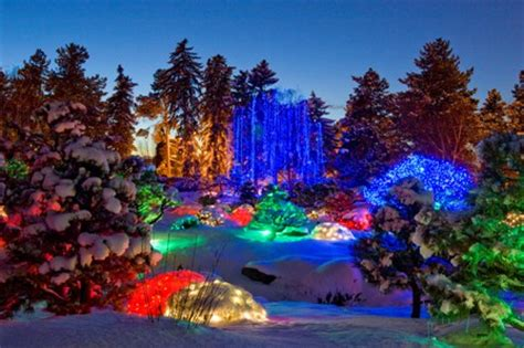 Denver Botanic Gardens Blossoms Of Light Blossoms Of Lights Denver S Best Realtor