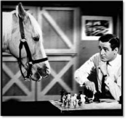 theme song young montalbano 1000 images about mister ed on pinterest mister ed